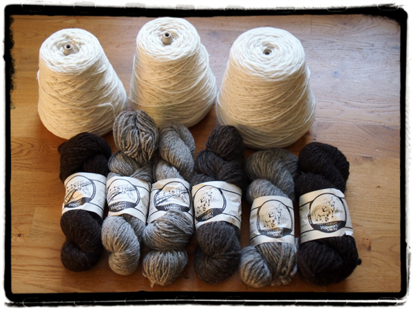 blog wooly wonders border