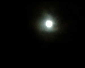 An almost full moon at the summit of the Rogers Pass.